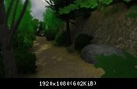 Pic 617